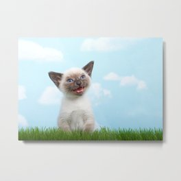 Siamese kitten singing Metal Print