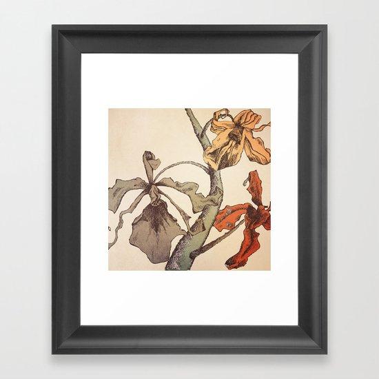 Hello Orchids Framed Art Print