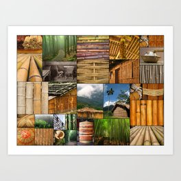 The Amazing World of Bamboo Art Print