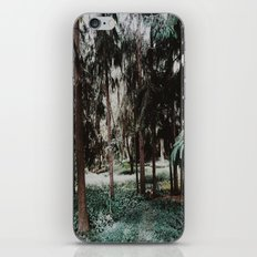 Forest Fairies iPhone & iPod Skin