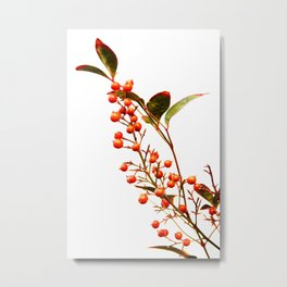 A Fruitful Life Metal Print