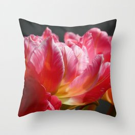 Pink and Red Parrot Tulips close up IV Throw Pillow