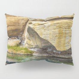 Spring Azure Pillow Sham