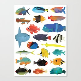 Tropical Fish chart Canvas Print