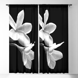 White Flowers Black Background Blackout Curtain
