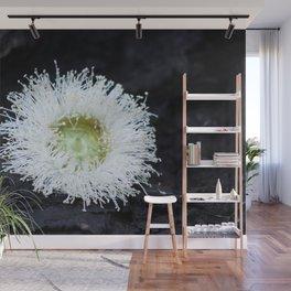 eucalyptus flower Wall Mural