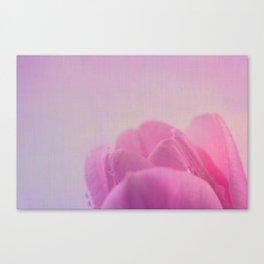 Simplicity V Canvas Print