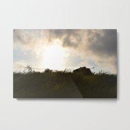 Bali Field Sunset Metal Print