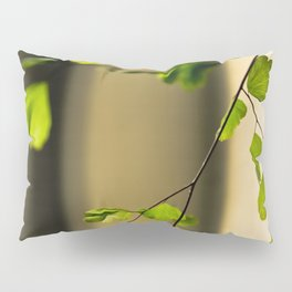Leaflets In The Light Pillow Sham