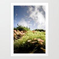 fairy tale Art Prints featuring Fairy Tale by Tom Radenz