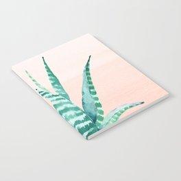 Desert Succulent Aloe Vera Notebook