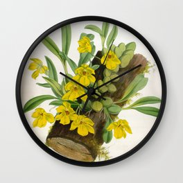 Vintage Yellow Orchids Log Lindenia Collection Wall Clock