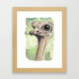 Ostrich 'Stache II Framed Art Print