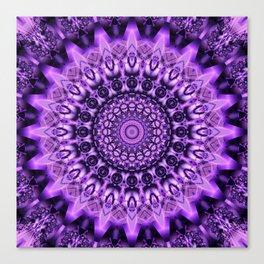 Mandala decidedness Canvas Print
