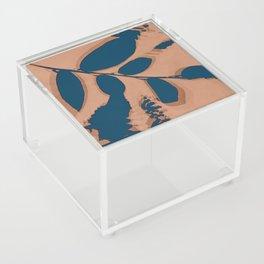 2020 Fall/Winter 03 Peach Acrylic Box