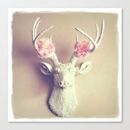 What a Deer Canvas Print