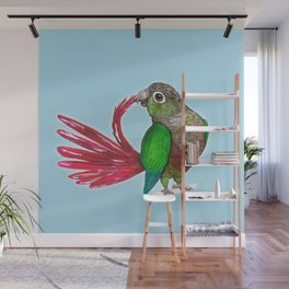 Preening green cheek conure Wall Mural