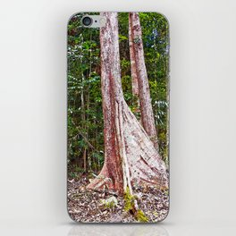 Buttress root in the rainforest iPhone Skin