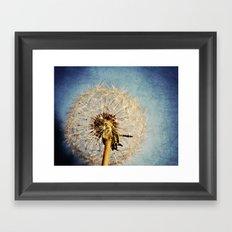 Dandelion Texture Framed Art Print