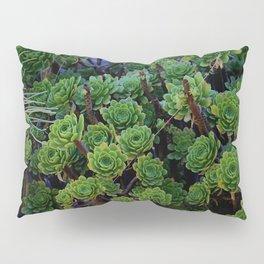 Succulent valley Pillow Sham
