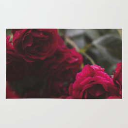 The city of roses #roseopolis2017 (001) Rug