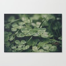 Happy St. Patrick Canvas Print