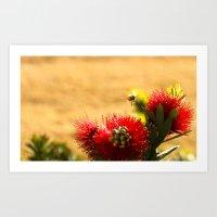 Pollination Time Art Print