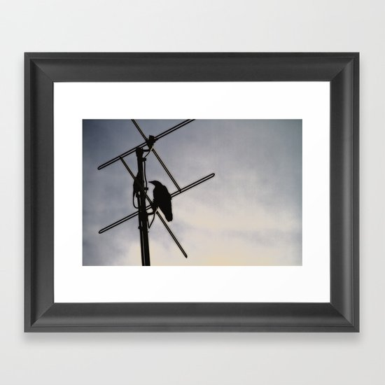 Ravens Perch Framed Art Print