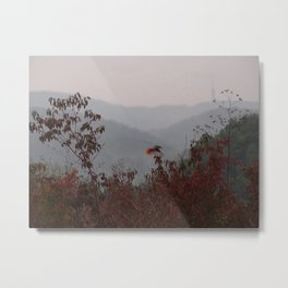bird with red tail Metal Print