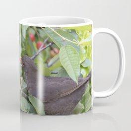 turdus merula common blackbird give food at her puppy Coffee Mug