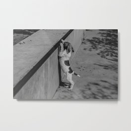 One day I'll skate here Metal Print