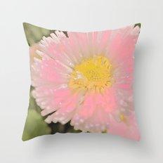 The Singular Beauty Of A Daisy Throw Pillow