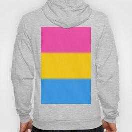 Pansexual Pride Flag v2 Hoody