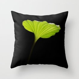 Leaf of the nervilia aragoana  Throw Pillow