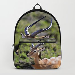Wildlife Gossip Backpack