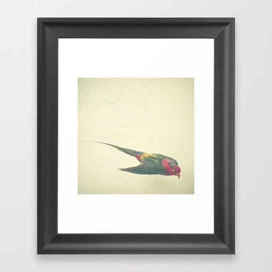 Bird Study #4 Framed Art Print