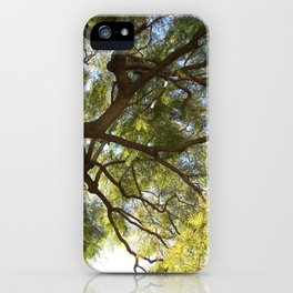 Dawn on Mount Carmel iPhone Case