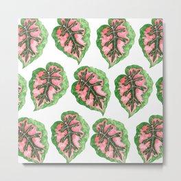 Begonia Leaf Pattern Metal Print