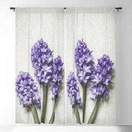 Three Lilac Hyacinth Blackout Curtain