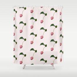 Medinilla Magnifica Sevens Shower Curtain