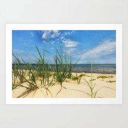Beach Gras Impressions Art Print