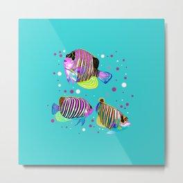Angelfish swimming amongst bubbles Metal Print