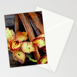 Pardon Moi...sture Stationery Cards