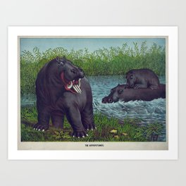 Vintage Illustration of Hippopotamuses (1874) Art Print