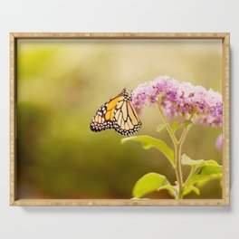 Papillon Serving Tray