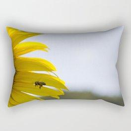 Approaching the Target Rectangular Pillow