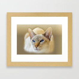 SIAMESE CAT LOVE Framed Art Print