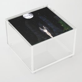 Draw Down Acrylic Box