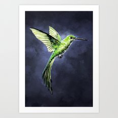 Green Hummingbird Art Print