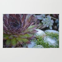 succulent Area & Throw Rugs featuring Succulent by Jay Pederson Photography